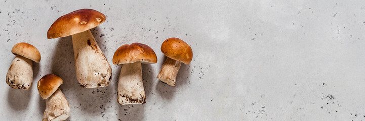 Wild Mushrooms, Porcini