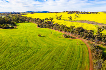 Farming fields in Toodyay, Western Australia