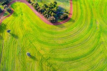 Distinctive lines in a farming field in Toodyay in Western Australia
