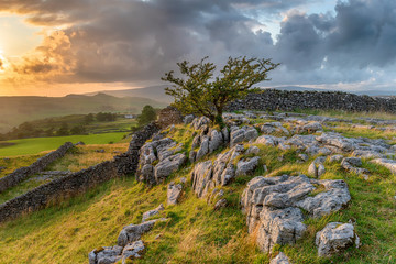 Wall Mural - Stormy sunset over a small limestone pavement at the Winskill Stones