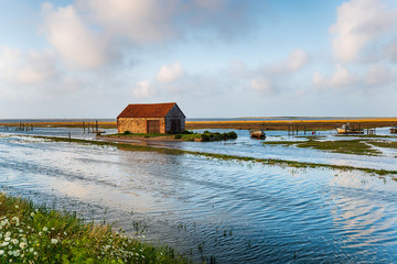 Wall Mural - Spring tides flooding the old harbour at Thornham