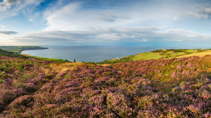 Wall Mural - A panoramic view of the Yorkshire coast