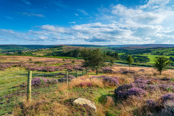 The North York Moors National Park in Yorkshire,