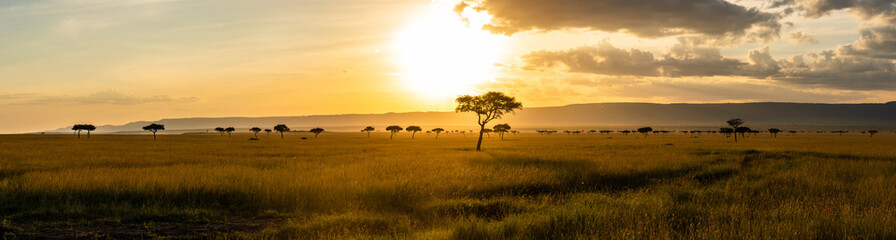 Fotobehang Afrika A panoramic view on the Masai Mara while sunset