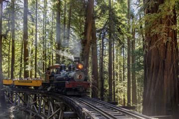 Roaring Camp' Dixiana Shay Steam Train over Trestle Crossing Redwoods in Santa Cruz Mountains.