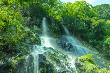 Foto op Canvas 兵庫県・緑深い峡谷の陽光に映える足尾の滝