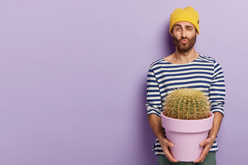 Funny handsome man keeps lips folded, raises eyebrows, holds big cactus, likes growing indoor plants, dressed in casual wear poses against purple studio wall with free space. People and botany concept