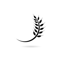 Wheat Icon. Shadow Reflection Design