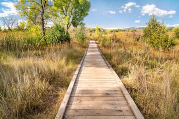 wooden boardwalk across wetland