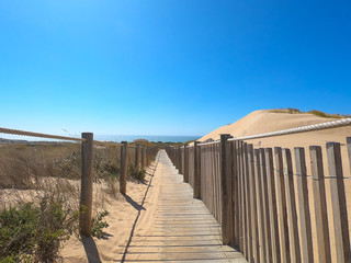 Wooden footpath through dunes in the Atlantic ocean coast. Guincho beach at sunset, Cascais Portugal