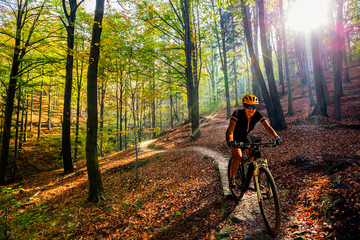 Wall Mural - Cycling woman riding on bike in autumn mountains forest landscape. Woman cycling MTB flow trail track. Outdoor sport activity.
