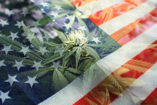 Marijuana Industry In The United States Of America Concept High Quality