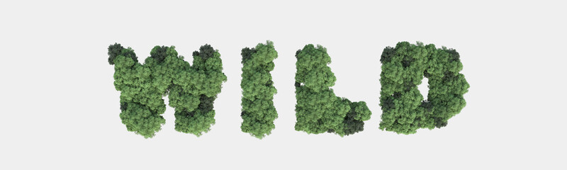 Forest word made with trees. 3d rendering.