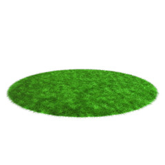 Grass rendering isolated on white background.