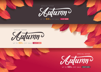 Fototapete - Autumn leaves background. Seasonal lettering.vector illustration.Promotion sale banner of autumn season.