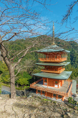 Fototapete - Scenic view of Seiganto-ji Temple at Nachi Katsuura, Wakayama, Japan