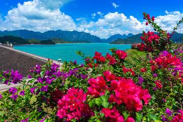 Wall Mural - Beautiful flowers in Ratchaprapha Dam at Khao Sok National Park, Surat Thani Province, Thailand.