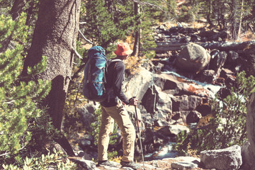 Fototapete - In hike