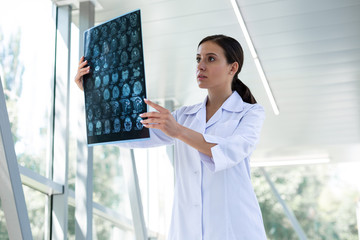 Concentrated brunette female person doing medical expertise