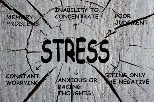 Stress Cognitive Symptoms