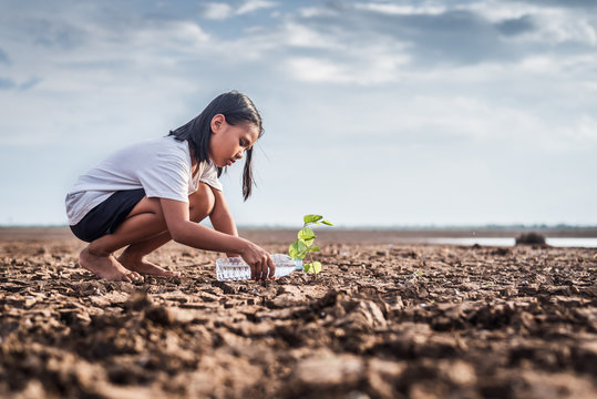 Asian girl watering green plant in dry land,Crack dried soil in drought and ,Climate change from global warming.