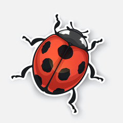 Vector illustration. Sticker of ladybug top view with contour. Red bug with black spots. Isolated on white background