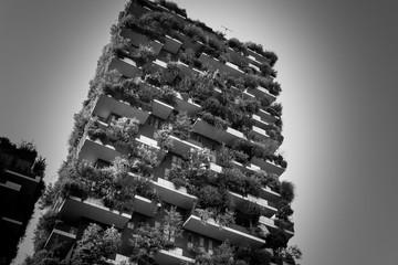 Foto auf Leinwand Milan Immeuble nature noir et blanc