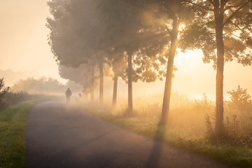 Photo sur Plexiglas Nature Cyclist in the fog on the towpath along the Lys in Lauwe - Menen, Belgium. After a cold and clear night we often get a layer of fog over the fields. This creates beautiful atmospheric pictures of the