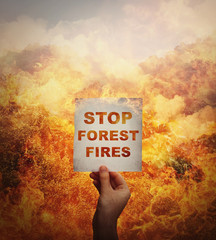Human hand holding a paper sheet with stop forest fires message in the middle of a wildfire disaster. Global environment danger, amazon rainforest burning.