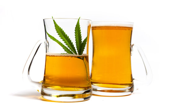 Beer with marijuana in a glass on white