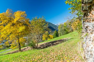 Fototapete - Herbst in den Alpen