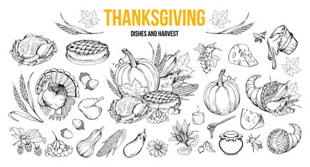 Thanksgiving coloring book illustrations set. Traditional autumn holiday celebration hand drawn symbols. Fall season harvest, natural vegetables. Turkey, pumpkin, honey and pie monochrome drawings