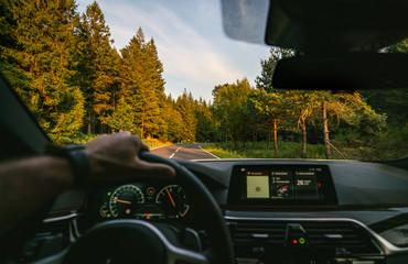 Wall Mural - hands of car driver on steering wheel, road trip, driving on highway road