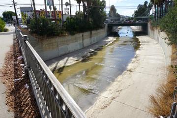 Urban Ballona creek in Los Angeles California Wall mural
