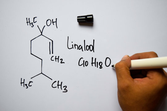 Linalool (C10,H18,O) molecule written on the white board. Structural chemical formula. Education concept