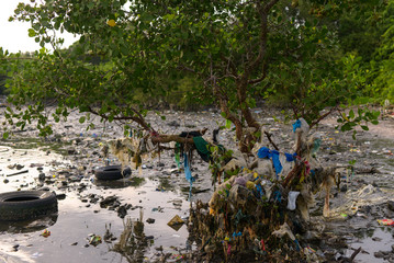 Plastic trash, including sachets of various products, are stuck between mangroves in Freedom Island, Paranaque City