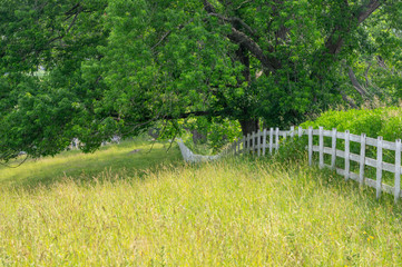 Wall Mural - White Board Pasture Fence