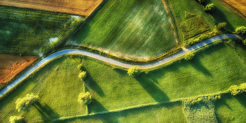 Wall Murals Meadow Drone aerial view - windy road in summer