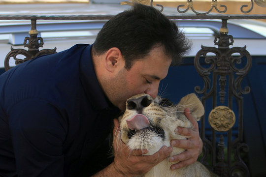 Sheikh Blend Mamoon tames 15-month old lion 'Leo' in Duhok