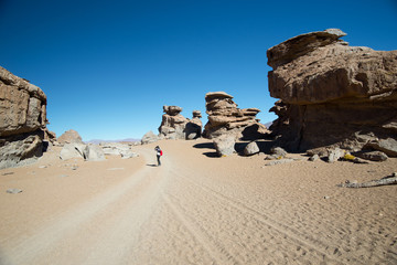 Landscape with red Rock formations in Eduardo Avaroa Andean Fauna National Reserve, Bolivia