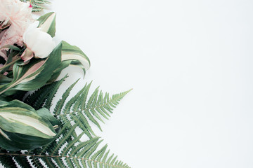 Forest flower leaf on white background. Flat lay, top view