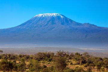 The most visited park in Kenya