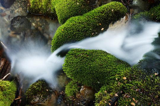 Brook in Patagonia, Santa Cruz, Patagonia, Argentina
