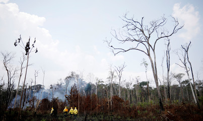 IBAMA fire brigade members attempt to control hot points during a fire in Apui