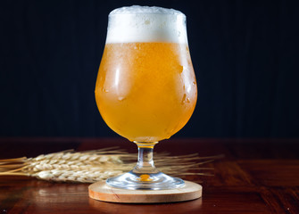 Hazy IPA craft beer in a tulip shaped beer glass with lots of foamy head.