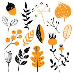 Vector set of doodle floral elements