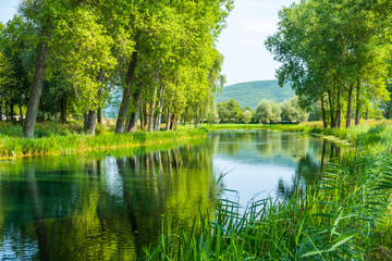 Photo sur Aluminium Pistache Beautiful Gacka river flowing between trees and fields, summer view, Lika region of Croatia