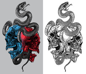 tattoo snake and skull hand drawing