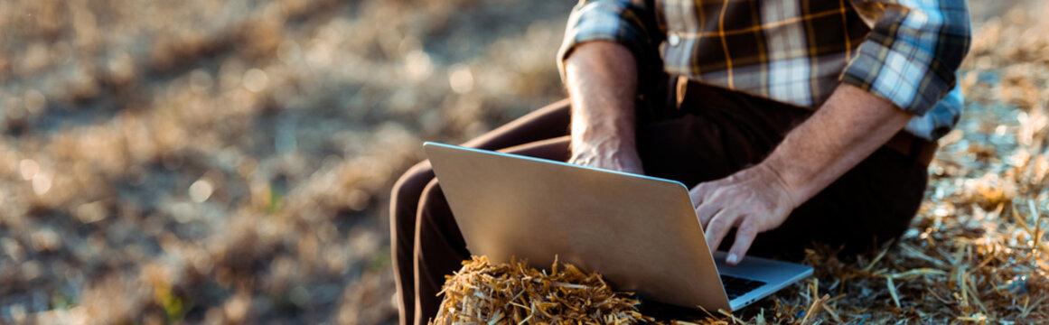 panoramic shot of self-employed man typing on laptop while sitting on bale of hay