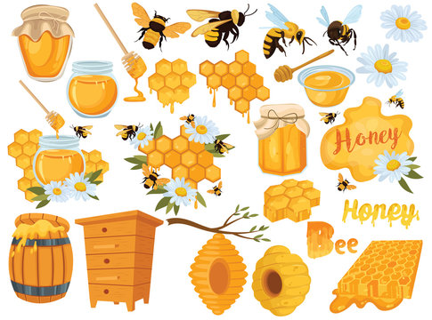 Honey set. Collection of beekeeping. Cartoon apiary set. Illustration of beehive, bees and honeycombs. Vector drawing of honey for children.